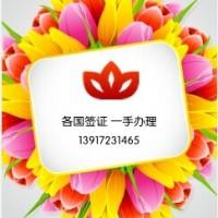 2017越南签证办理简单!快速!看得见!!