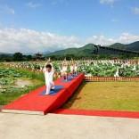 广州番禺区沙头瑜伽进修