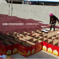 拉萨新疆大枣批发多少钱