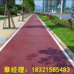 彩色透水地坪创意艺术路面