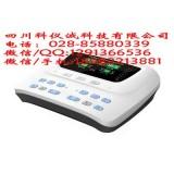 医用中频电疗仪ZP-100DIIA型独立双通道 数码显示
