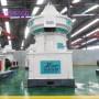 生产厂家直销大型生物质能源制粒设备 时产20木屑制粒生产线