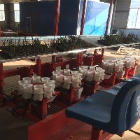 移栽机、火绒栽苗机、球葱移栽机视频画安全图片