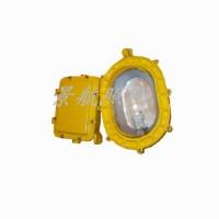 BFC8120L  LED防爆泛光灯 防爆泛光灯 上海厂家直