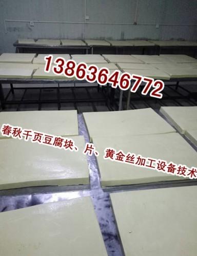 小型豆腐坊生产千页豆腐使用多大斩拌机诸城千页豆腐斩拌机哪家好