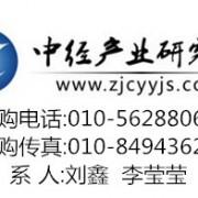中国汽车(电动车)动力电池行业市场营销战略及发展竞争力研究报