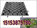 中山鱼塘防渗膜,中山藕池防渗膜,阻根板