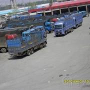 广州惠州到山东淄博滨州的大货车出租平板车出租回程车调派价格
