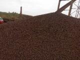 中山陶粒、中山陶粒厂家、中山陶