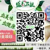 邢台盛卷在握卷饼小吃加盟营养美味绿色健康新风尚