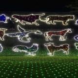 湖北国际灯光节