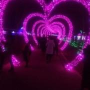 国际梦幻灯光节出售灯光秀出售灯光展出售厂家