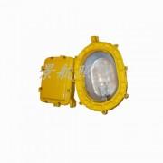 BFC8120L  LED泛光灯 泛光灯 上海厂家直