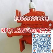 KG9001A-D型拉绳闭锁开关