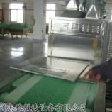 广州志雅硫酸亚铁烘干微波设备