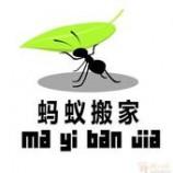 蚂蚁搬家15397094306 杭州搬家公司 钢琴搬运