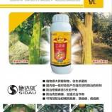 广西钦州果树清园杀菌剂80%乙蒜素砂糖橘青苔病溃疡病专治克青