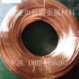 祈盟 供应C5191  磷铜线 0.6 0.7 1.0 线径