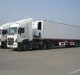 上海到温州冷藏物流公司 沪黾供 上海到温州冷藏物流收费价格