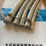 征帆牌 钢芯铝绞线LGJ型号齐全 厂家直销 120/20现货