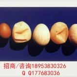 山东中药微生态制剂防治蛋壳颜色变白